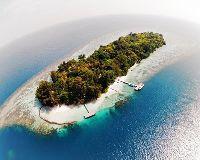 Foto de Endangered Indonesia